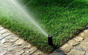 irrigazione Garden Time Pura Ticino manutenzione progettazione giardini